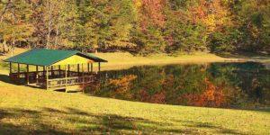 pond near woods in Hocking Hills