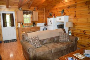 living area and kitchen in The Landing log cabin