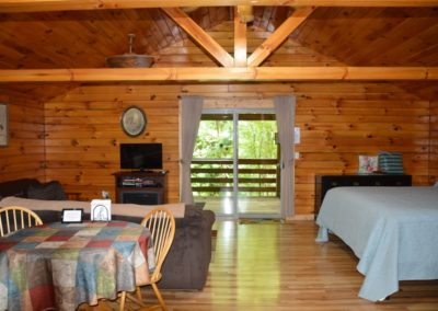 living area and bed in The Overlook log cabin