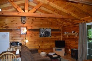 entertainment area in Silverwolf log cabin