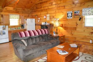 entertainment area and kitchen in Yesteryear log cabin